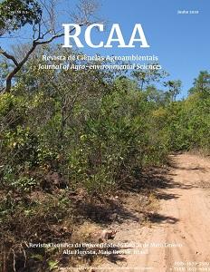 Trilha na RPPN Cristalino - norte de Mato Grosso - Foto: Odair de Souza Fagundes